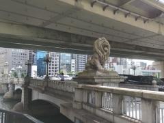9右岸のライオン