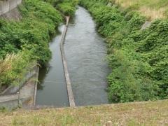 水路は満水
