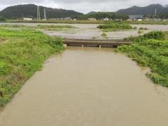 本川の増水