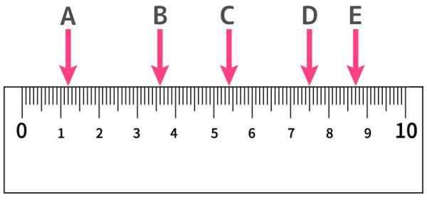 10cm定規