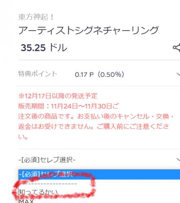 スクリーンショット (31674)