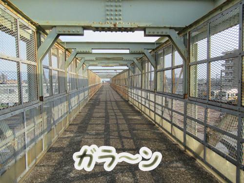 誰もいない夕方の跨線橋
