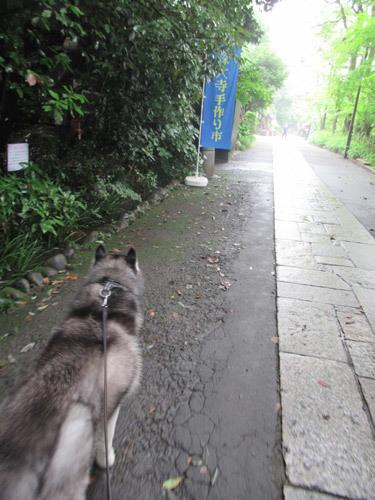 深大寺散歩スフレ