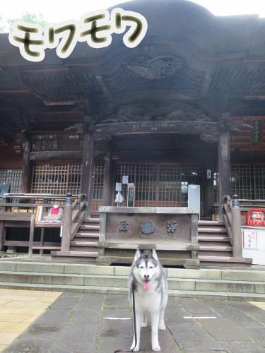 雨上がりの深大寺