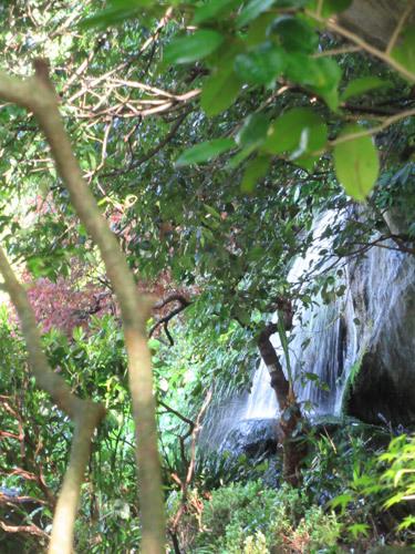 深大寺の滝