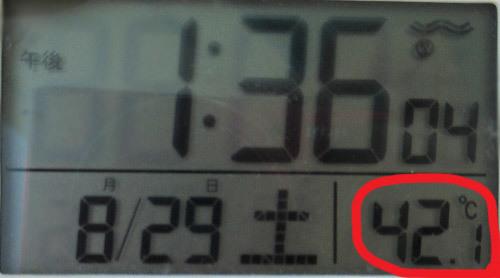 8月末なのに猛暑