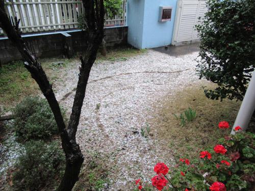 3月なのに雪