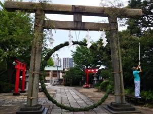 1石浜神社の茅の輪  大きい