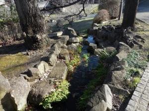 野川 水車から流れる湧水