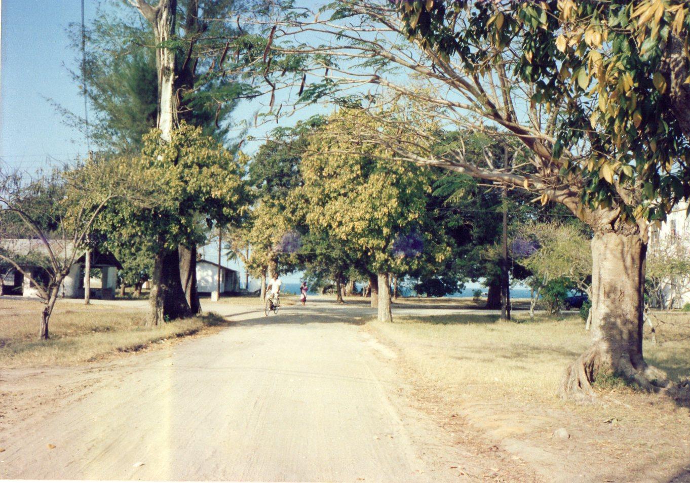 バガモヨの道