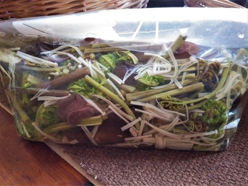 山菜の水煮