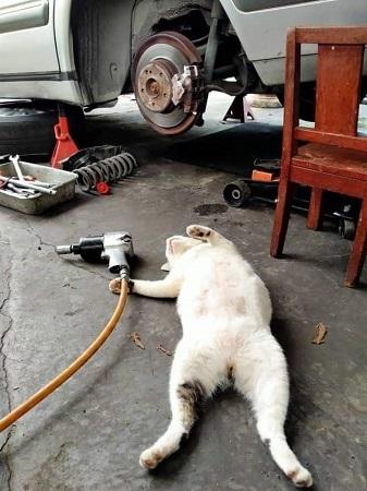自動車修理 (2)