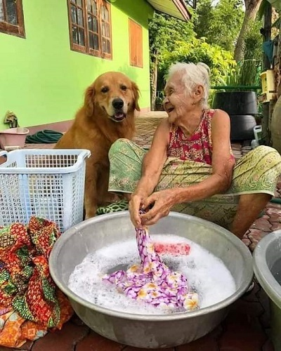 おばあちゃんはどうして (1)