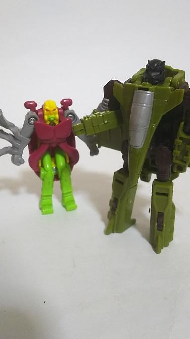 BW-Beetle-10.JPG