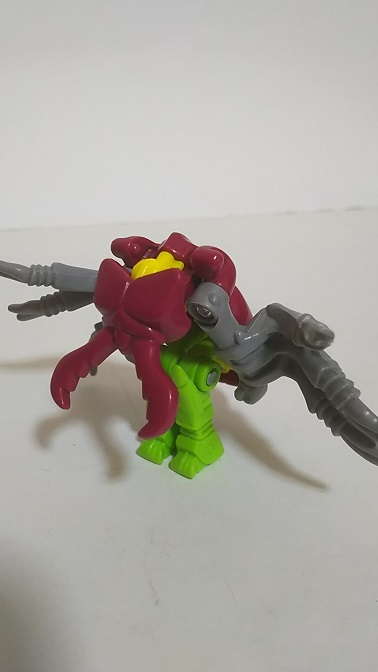 BW-Beetle-5.JPG