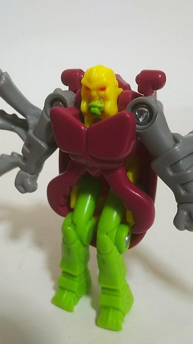 BW-Beetle-7.JPG