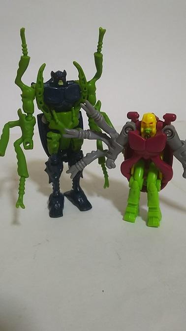 BW-Beetle-9.JPG