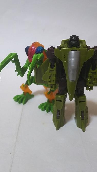 BW-Buzzclaw-1.JPG