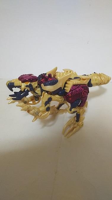 BW-M-Dinobot-2.JPG