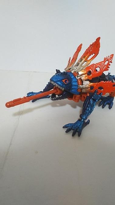 BW-M-Iguanus-5.JPG