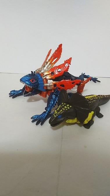 BW-M-Iguanus-6.JPG