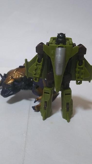 BW-Noctorro-1.JPG
