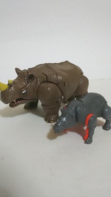 BW-Rhino-3.JPG