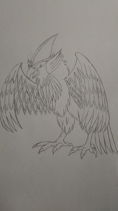 Knight-Bird.JPG
