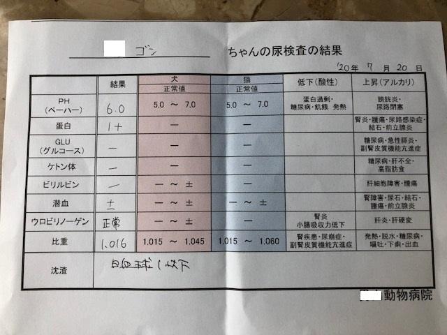 7月20日検査結果