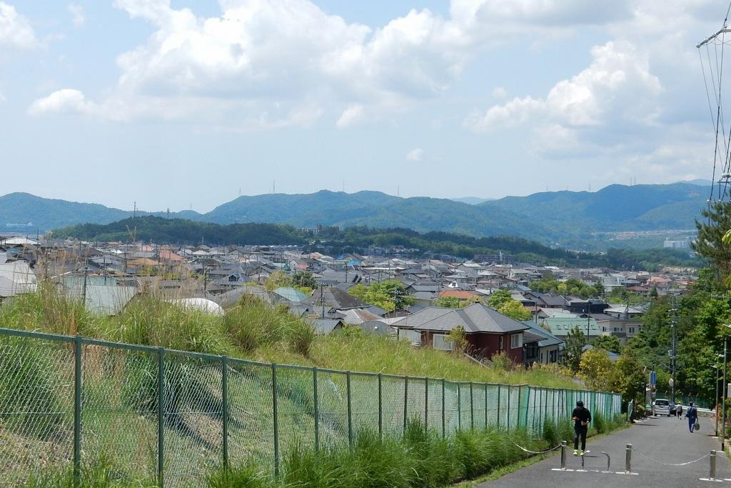 能勢電鉄 253