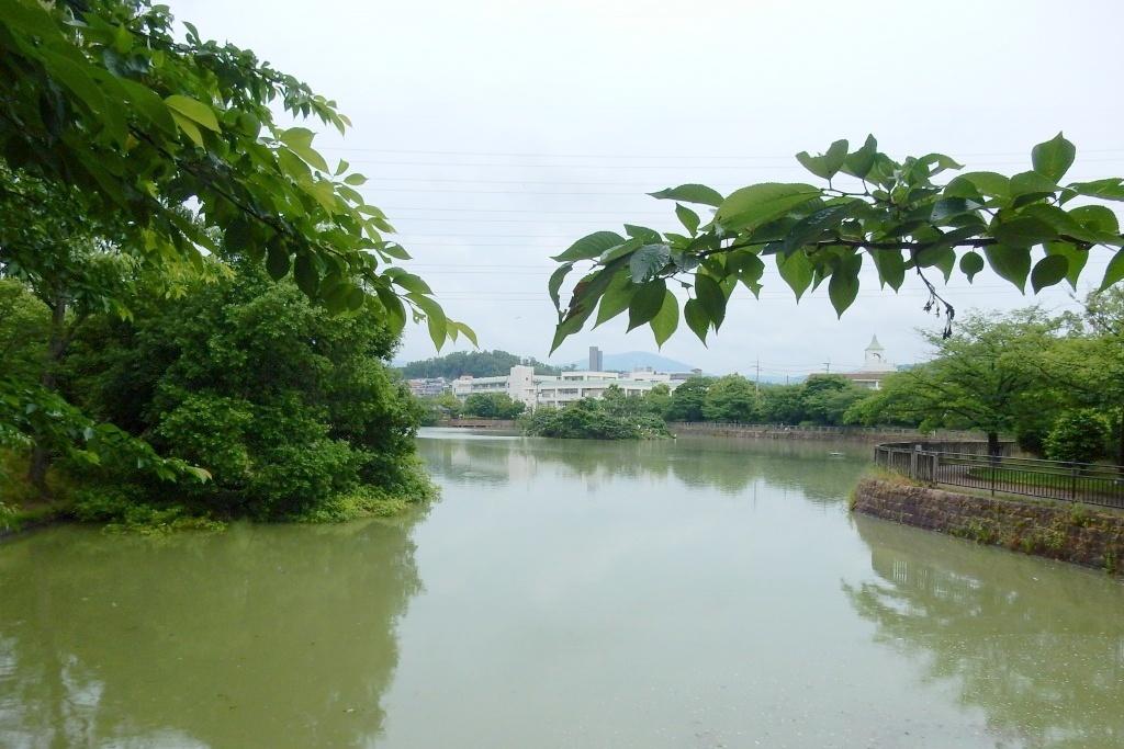 茨城川 049