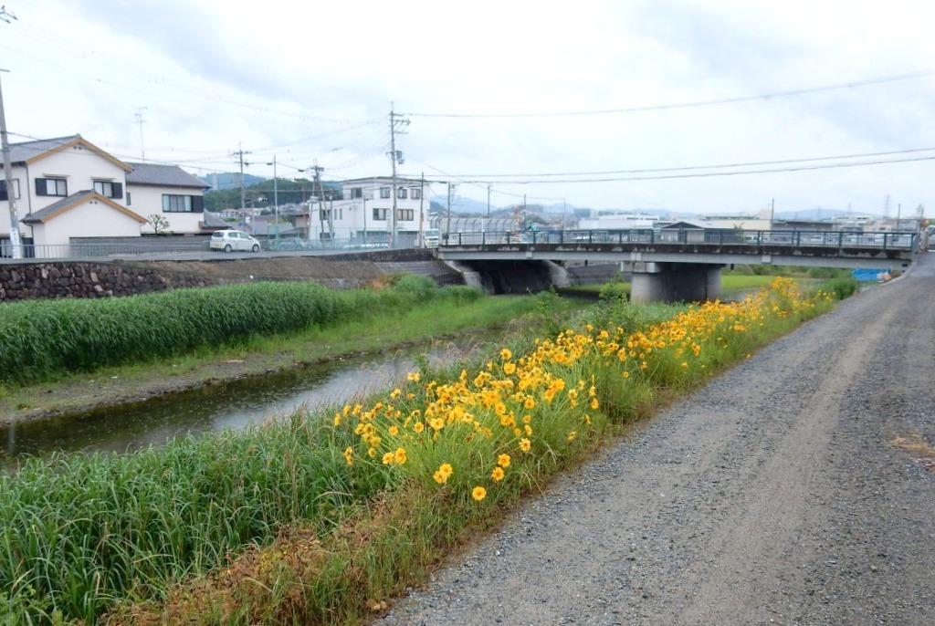 茨城川 089