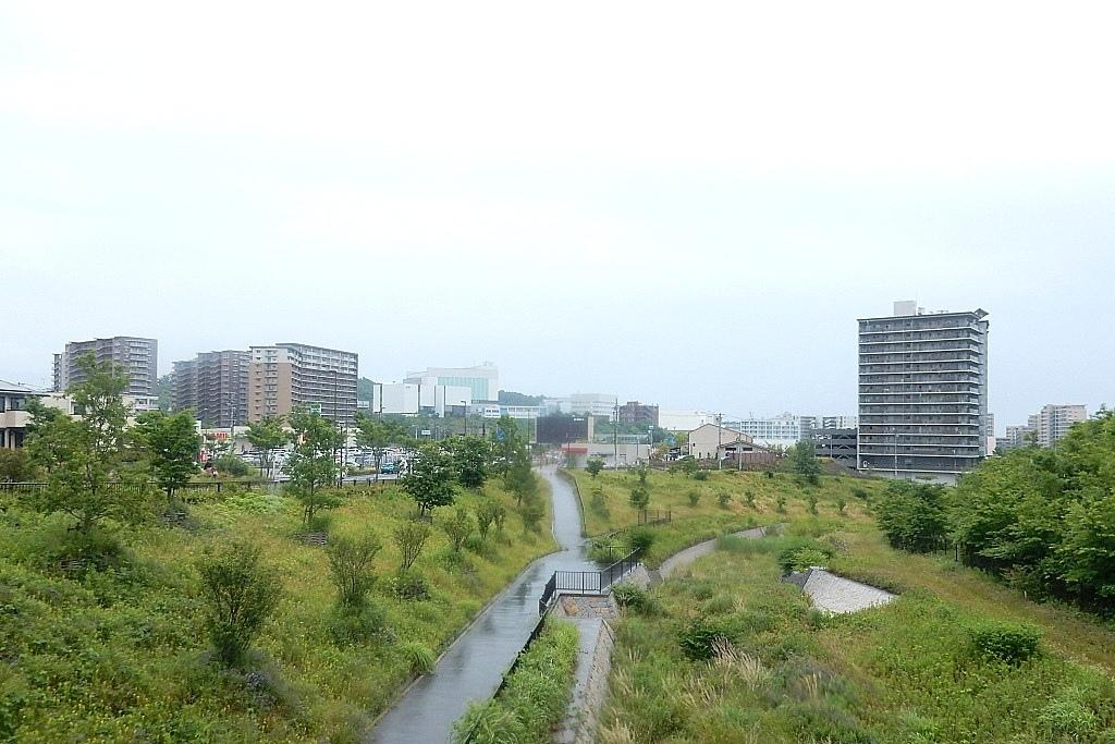茨城川 236