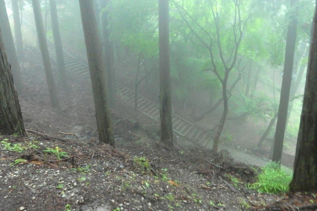 妙見山 091