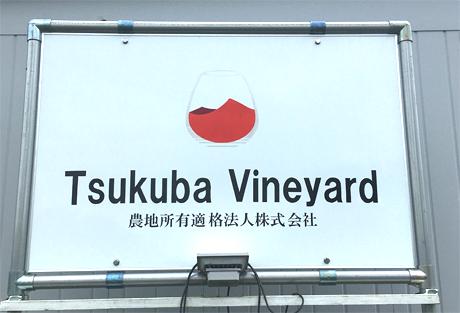 TTN土浦:筑波山の麓、広大なワイン葡萄畑にLoRaWAN土壌センサを設置 -  「Tsukuba  Vineyard」