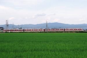 20200801-8103f-kashiharajinguumae-local-iwami-tawaramoto_IMGP0052m.jpg
