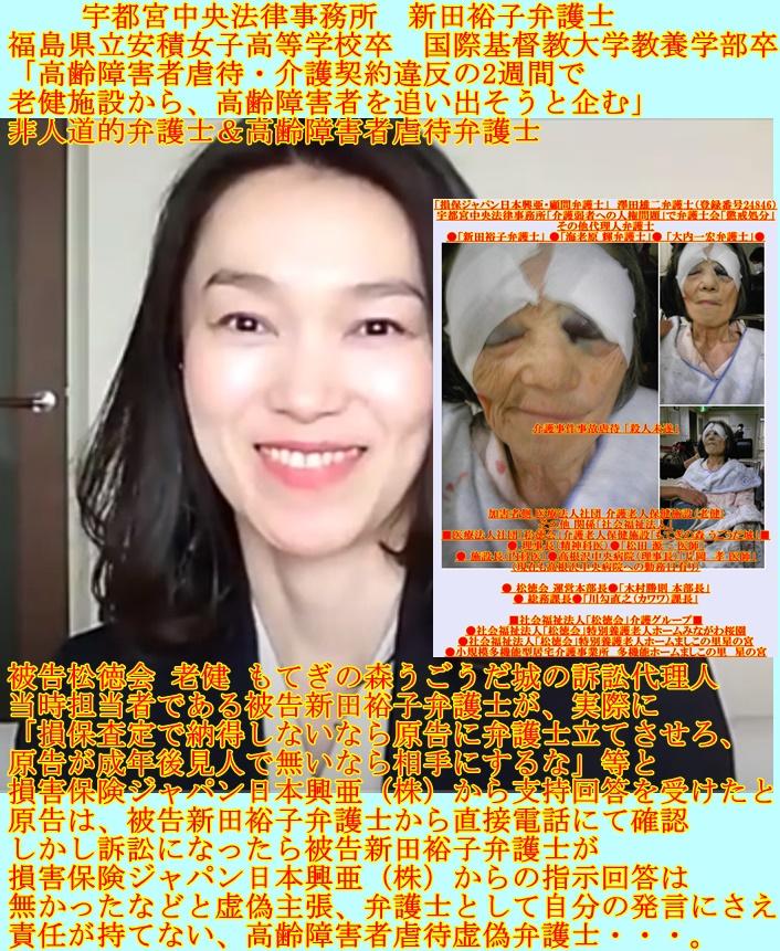 宇都宮中央法律事務所 新田裕子弁護士 高齢障害者虐待弁護士 非人道的弁護士2
