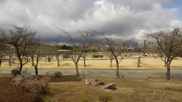 五十鈴湖0307