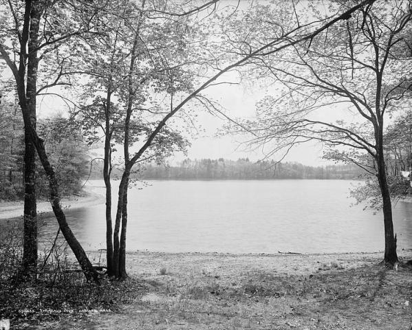 748px-Walden_Pond.jpg