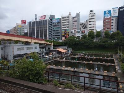 roegjiroe578 (13)