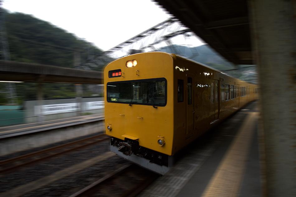 IMG_9355.jpeg