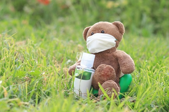 bear-5419597_640.jpg