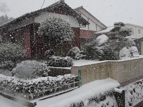 20210108雪かき 023