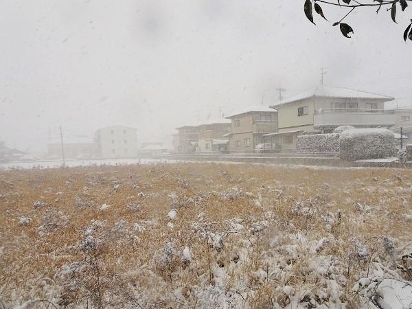 20210108雪かき 050