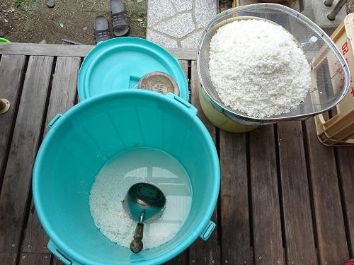 20210322米麹の仕込み 004