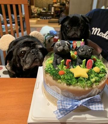 ケーキと一緒に