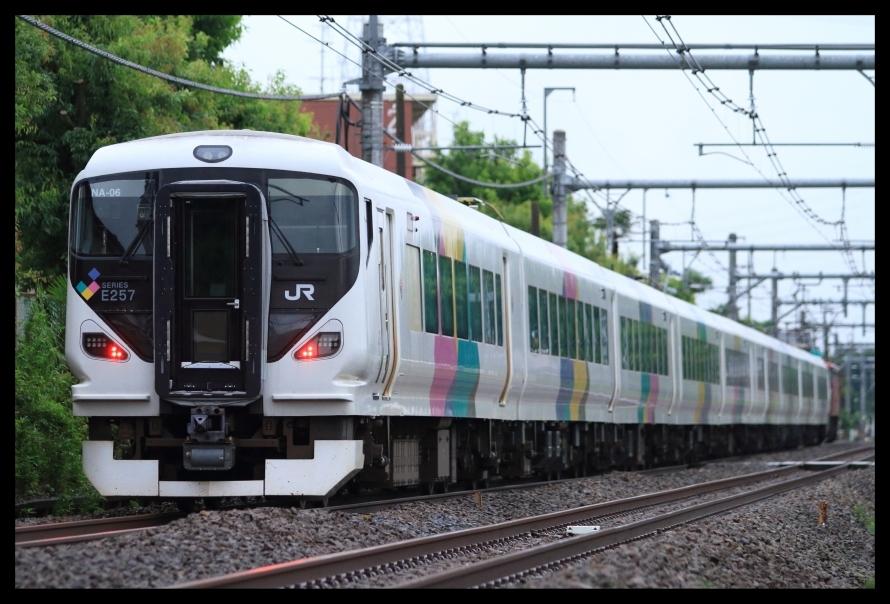 武田菱なのに2000番台という伝説編成E257NA-06