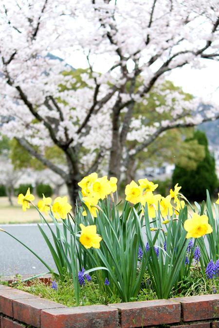 三ツ塚史跡公園