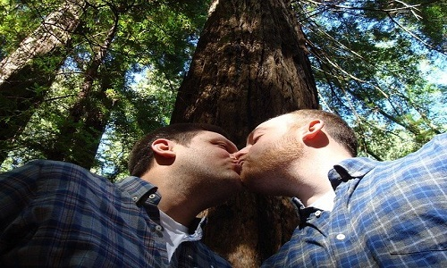 gay-marriage-1571621_640.jpg