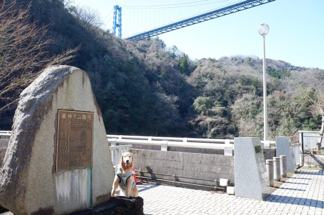 竜神大吊橋 竜神峡 亀ヶ淵 2020.3.15 035